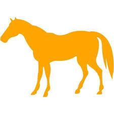 Image result for orange horse